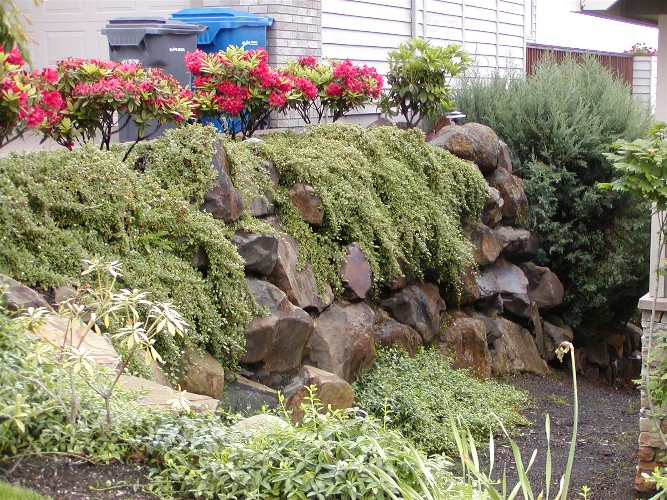 Boulders with ground cover