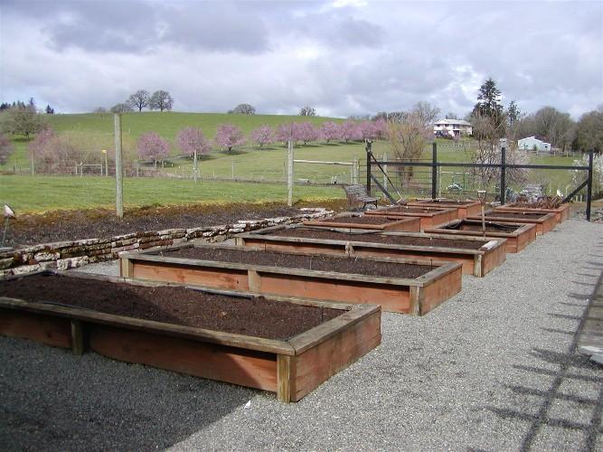 Wooden garden boxes